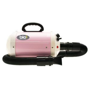815680 - GP Blo i250P pink hot blaster_1