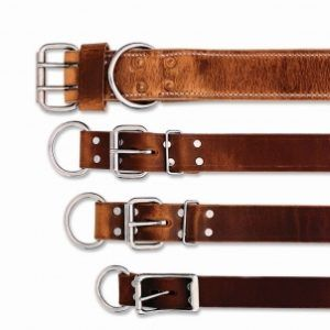 20110817211550_nasco_neck_straps