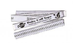 20170116102933_holstein-calf-tape
